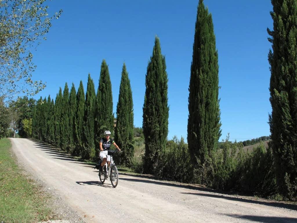 Itinerario in bici sulla Via Francigena